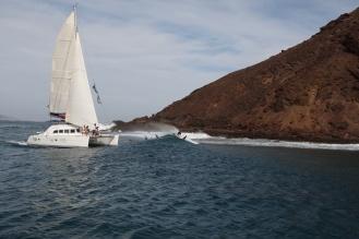 Sailing Surf