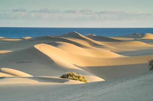 Park natural dunas