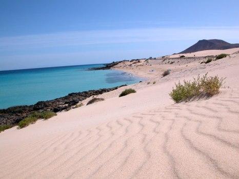 Playa del _MORO_